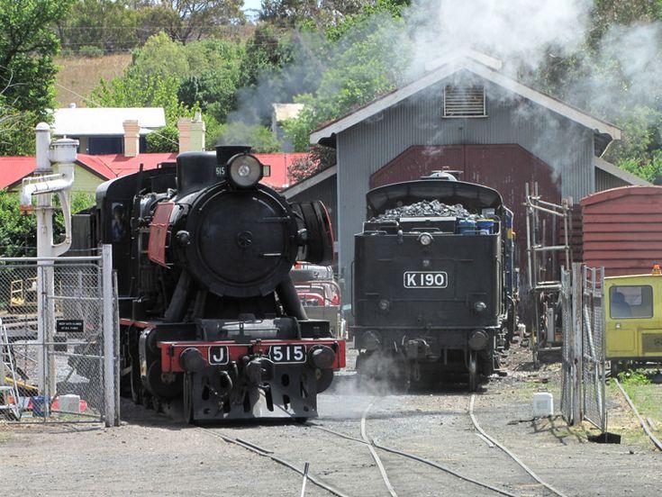 Preserved Steam Locomotives Down Under - J 515 - 02