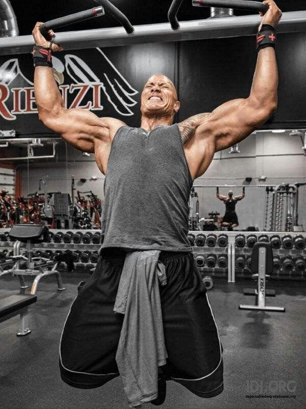 Download The Rock Wallpaper Gym