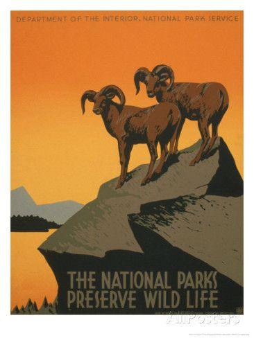 アメリカの国立公園 アートプリント
