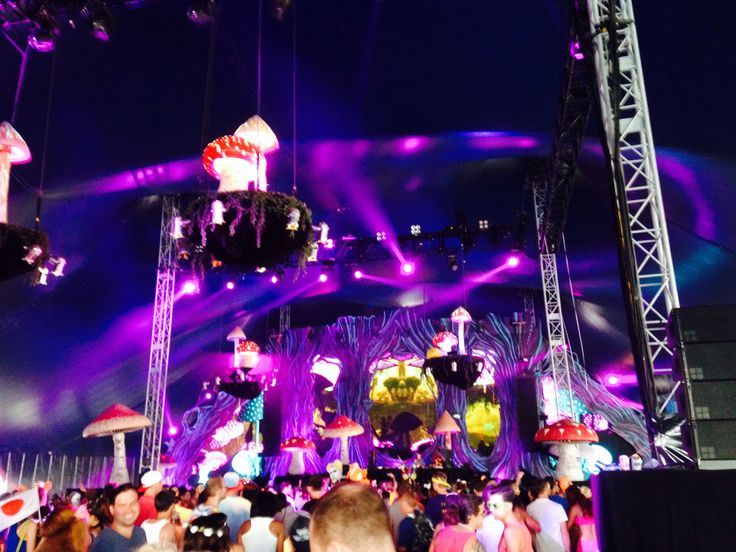 #allgonepetetong#tomorrowworld#atlanta