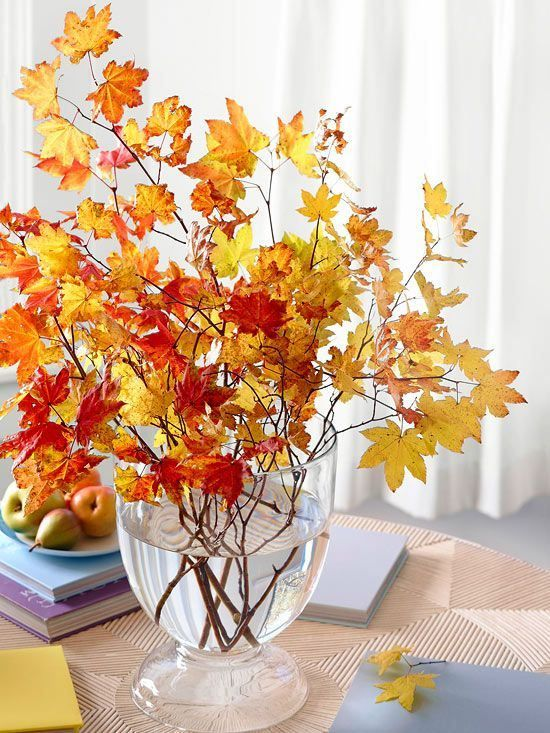 Cut long branches with colored leaves still attached (see instructions above to prevent bringing bugs into your home). Place in a tall vase or an umbrella stand. Be sure the branches are proportionate to the vase or stand.: