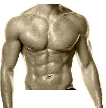 Sport et Nutrition : Quelle est la durée idéale d'une séance de musculation ?