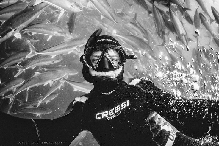 https://flic.kr/p/ww5JNw | Self portrait | Black and white self portrait of diver and kingfish, Port Lincoln South Australia