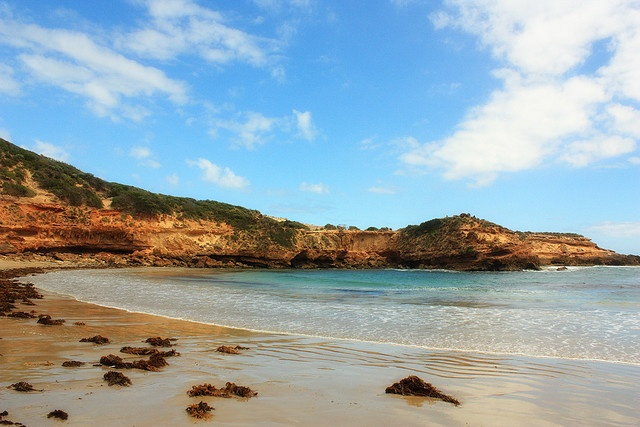 Diamond Bay, Mornington Peninsula - Natasha Glaister Photography