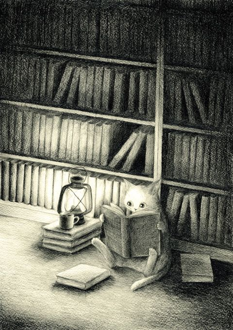 Cat Reading a Book and Cat Library by DeviantArt artist emirkgkn.