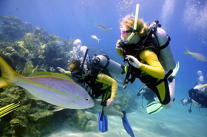 PADI Discover Scuba Diving in Puerto Aventuras PADI Discover Scuba Diving is simply the best resort course. It does not provide a diving certification, but it will enable you to resort dive with us during your complete stay. Normal program includes 1 theo