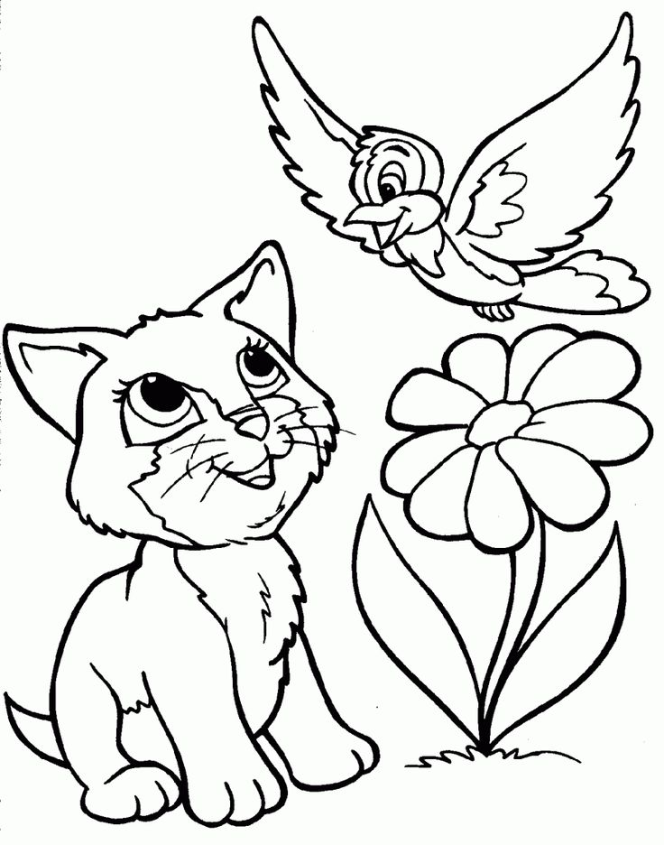230 besten Animal Coloring Pages Bilder auf Pinterest | Dinosaurier ...