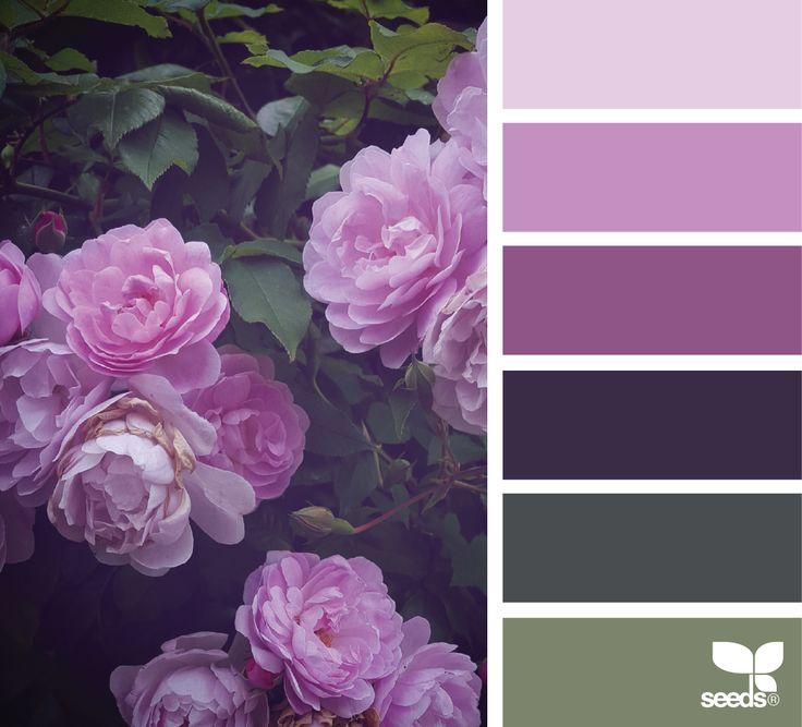 { flora palette } image via: @wild_rubus