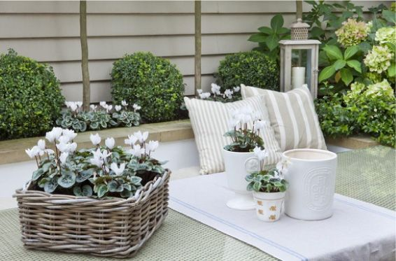 Blog di arredamento per interni, tante idee e consigli per arredare con stile appartamenti e stanze: scopri Home Decor.