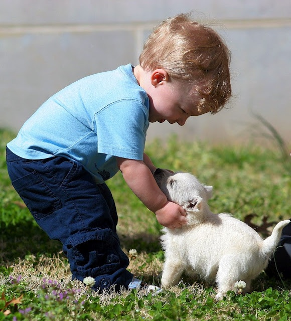 Funny Kids and Animals. Happy baby boy, happy little puppy ...
