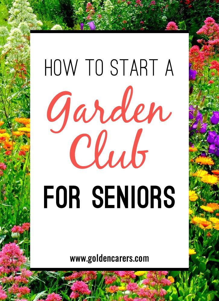 how to start a garden club for seniors - Home Gardening Club