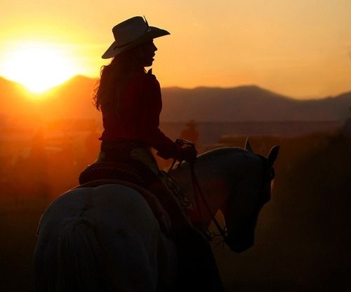 ....: Hors Boards, Country Girls, Horses Boards, Cowboys Girls, Silhouette Ideas, Dreams Life, Boots, Affection Horses, Cowgirl Spirit
