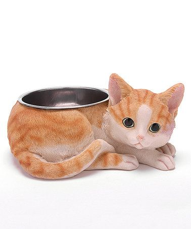This Yellow & White Cat Pet Feeding Dish is perfect! #zulilyfinds
