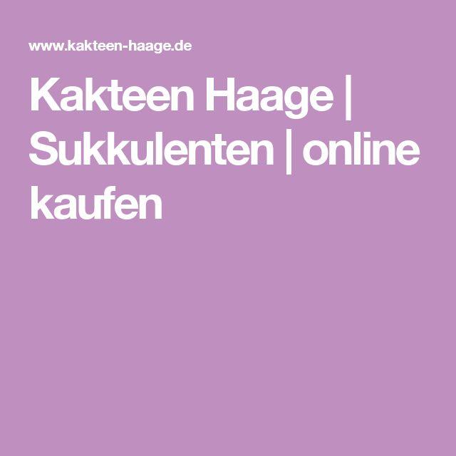 Kakteen Haage | Sukkulenten | online kaufen