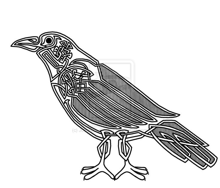 celtic looped crow celtic and norse corvids pinterest
