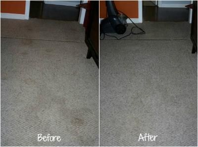 Before and after pictures of pet stains on carpet that were removed with home carpet cleaners {on Stain Removal 101}