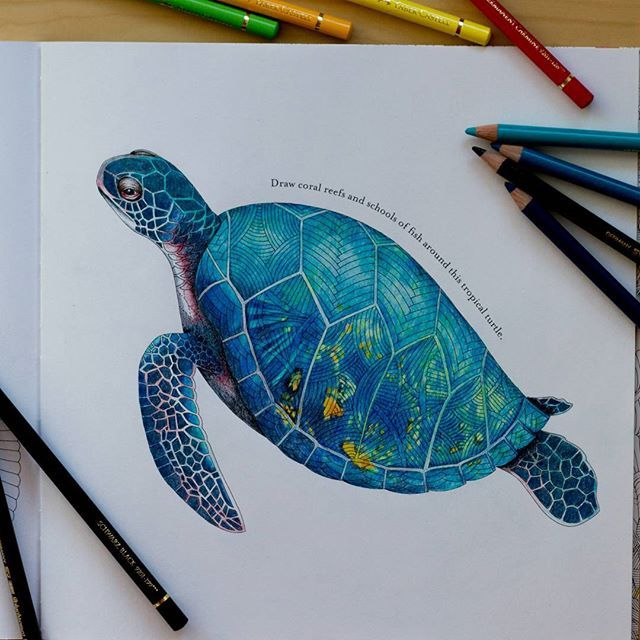 910 best Art Coloured Pencils Colored Pencils images on