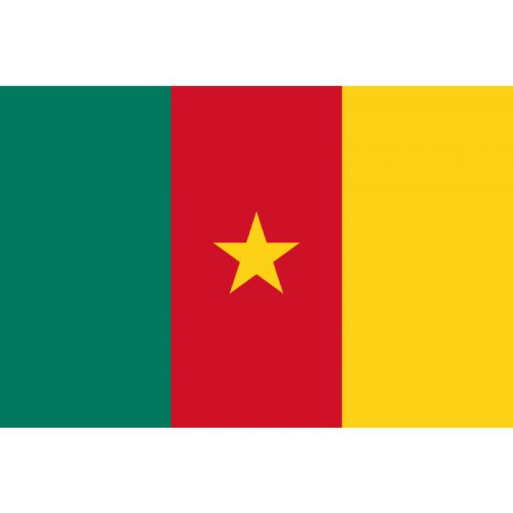 Tafelvlaggen Kameroen 10x15cm   Kameroenese tafelvlag  De nationale vlag van Kameroen is een verticale driekleur in de kleurencombinatie groen-rood-geel met een gele ster in het midden van de rode baan. De vlag werd in de huidige vorm aangenomen op 20 mei 1975.