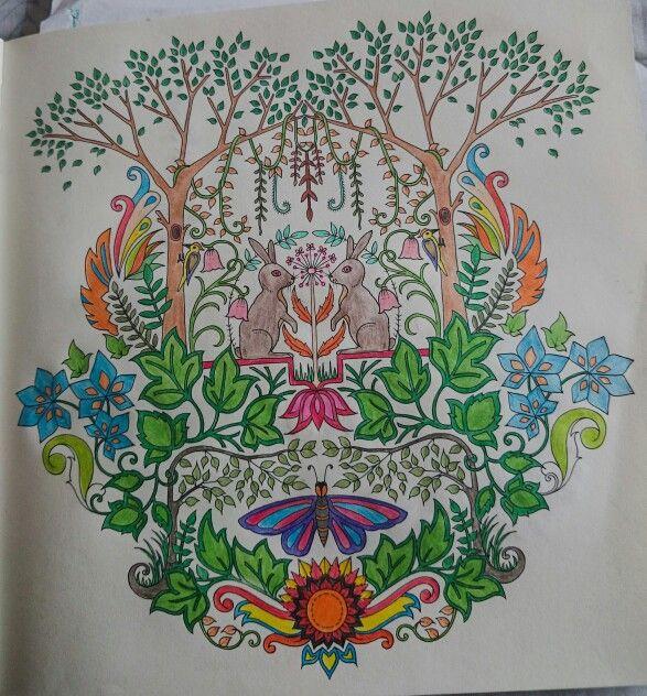 Enchanted Forest Floresta Encantada