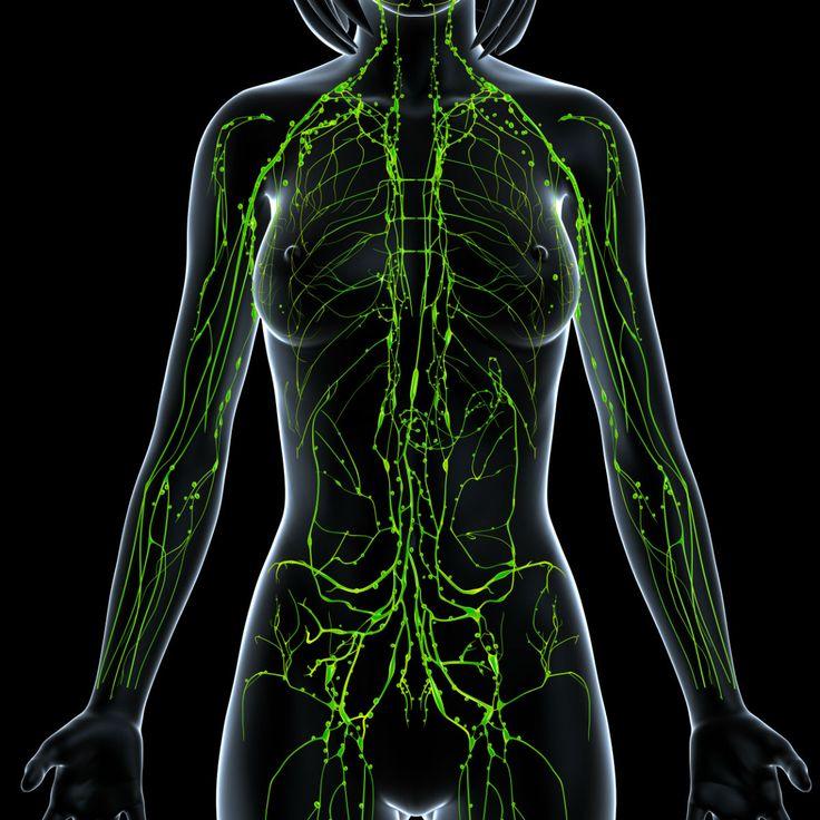 Cáncer de linfoma, ¿de qué estamos hablando? - http://plenilunia.com/cancer/cancer-de-linfoma-de-que-estamos-hablando/37789/