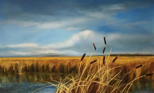 """Richard Cole CATTAILS 16006 / Canada House Gallery - oil, canvas 32"""" x 52"""""""