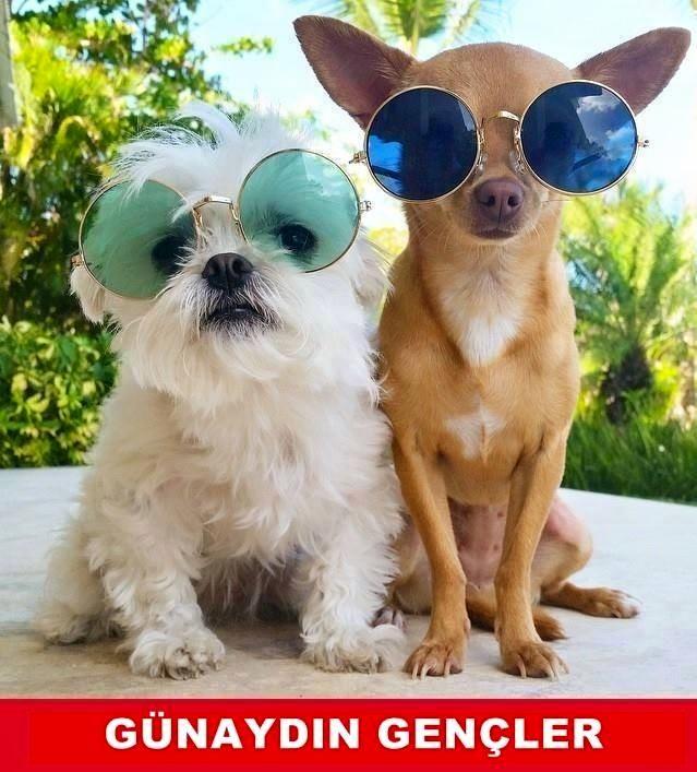 Günaydın gençler. :)  #mizah #matrak #komik #espri #şaka #gırgır #komiksözler #caps