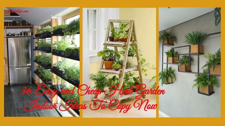 36 Easy And Cheap Herb Garden Indoor Ideas To Copy Now