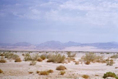 Como fazer  um bioma de deserto em uma caixa de sapatos