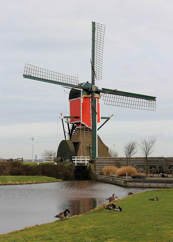 ˚Netherlands - Zuid-Holland - Hazerswoude Dorp - Rooie Wip