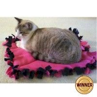 CAT PILLOW: Good project for scout troops to donate to animal shelters. Free instructions at www.freekidscrafts.com