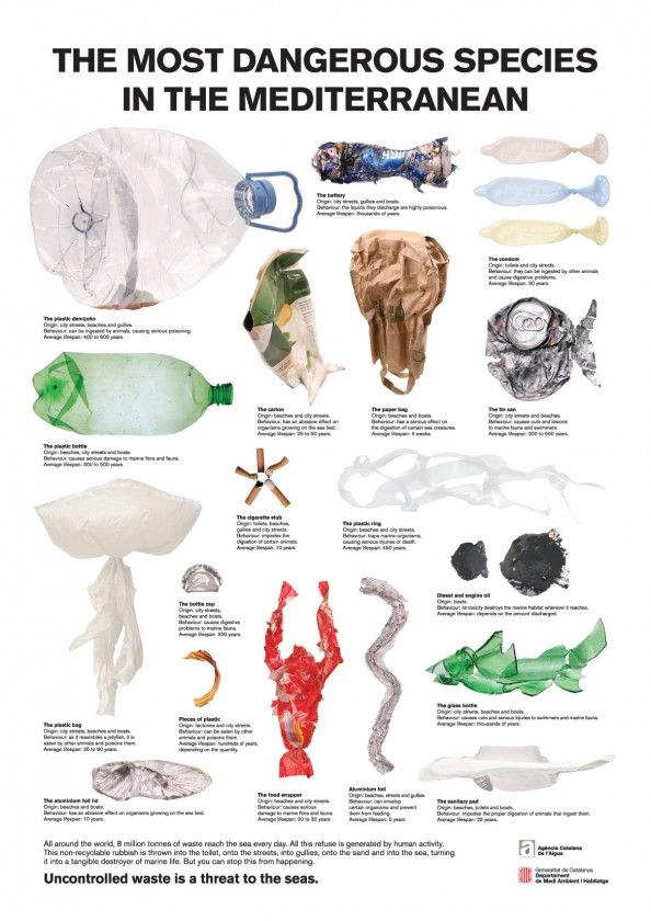 "The Most Dangerous Species in the Mediterranean #Infographic - Click it to see it larger. Maybe this will inspire us all to be more ""conscious"" of our waste and its impact on our planet."