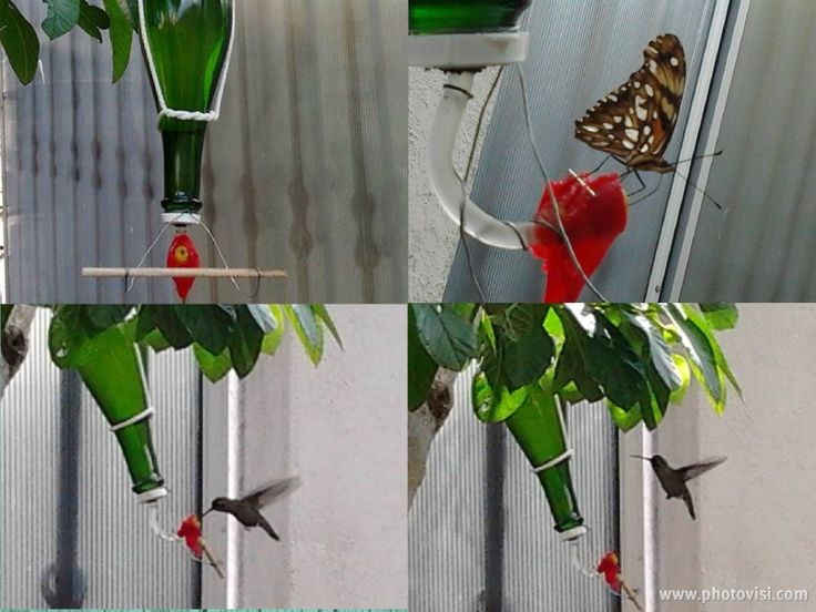 Home made Hummingbird Feeder (and Butterflies)   Bebedero casero para Colobrís (y Mariposas)     Alimentador Caseiro.para Beija-Flor (e Borboletas)  VIDEO http://www.youtube.com/watch?v=WxBBkdUSEy0