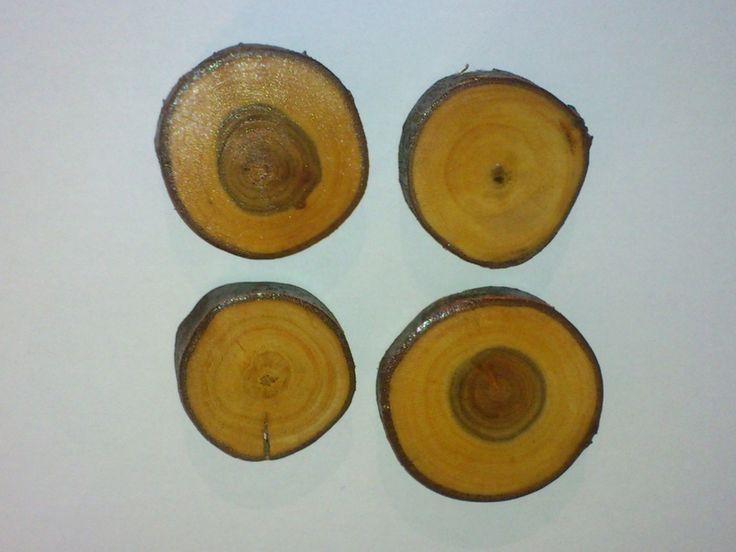 4 starke Magnete mit Rinde aus Pflaume und Apfel von Michis-Holzecke auf DaWanda.com