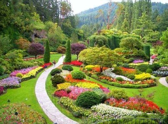 Ne perdez rien de votre jardin cet t jardins for Jardin et jardinage