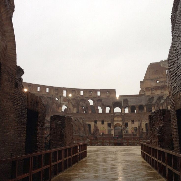 Inside the Colosseum | @BrowsingRome on Instagram