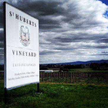 St Huberts Vineyard