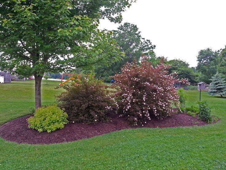 Landscaping Yard Landscaping Landscape Design Front Yard