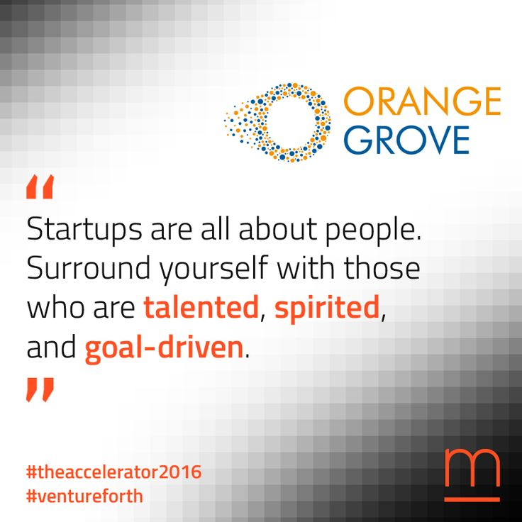Our trusted ally Orange Grove will be our hub for growth during #TheAccelerator2016!  Join The Accelerator – submit your company at: http://metavallon.org/the-accelerator/