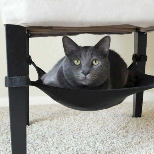 Under Chair Cat Hammock   Give your cat a comfortable place to dwell.  #cat #pets #cataccessories #petsgadgets, #animals #animalskingdom #giftforpets