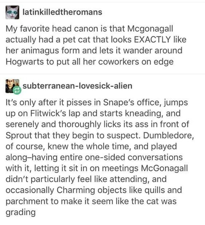 My favorite headcanon is that McGonagall actually had a pet cat that looks exactly like her animagus form and lets it wander around Hogwarts to put all her coworkers on edge.