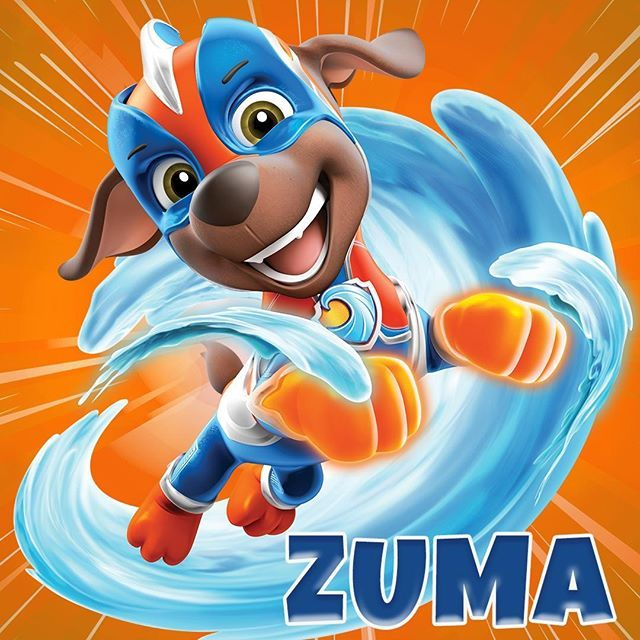 Paw Patrol En Instagram Mighty Zuma With His Water Power Zuma Can Shoot Jets Of Water From Paw Patrol Birthday Decorations Zuma Paw Patrol Paw Patrol Gifts