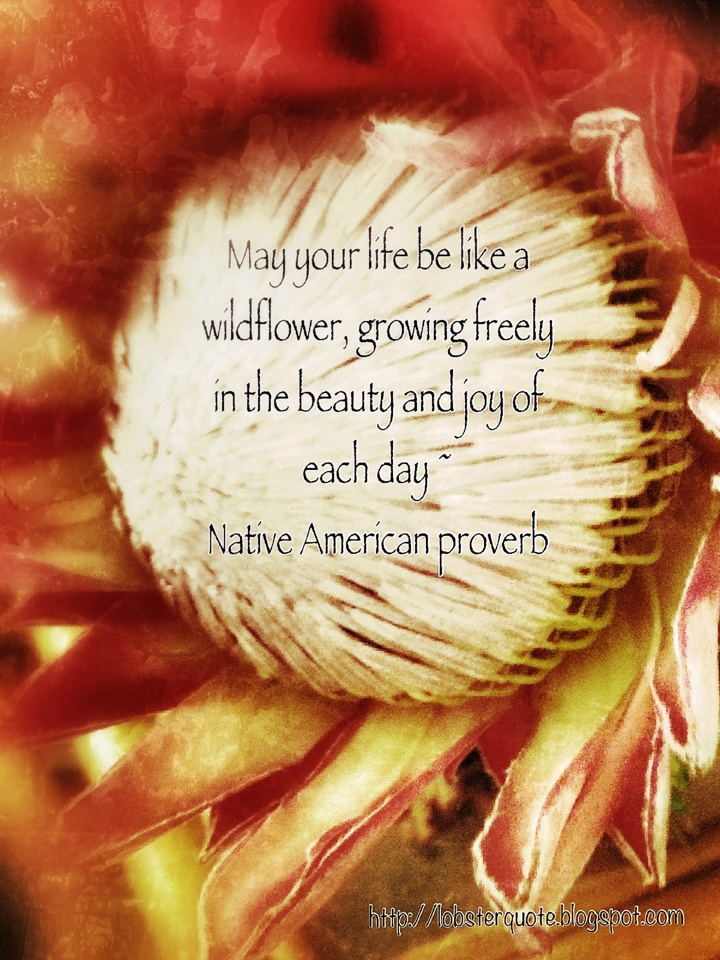 Native American Proverb 299 best Natchez images