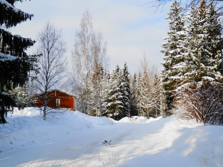 "Saunakallio,Finland  ""Red cottage into the woods"""