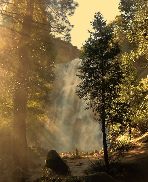 caringforapathy:  campfiresmell: Grizzly Falls, Kings Canyon National Park