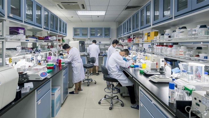 Seeking new ways to treat diseases including cancer and diabetes, scientists around the world are gathering gene samples for study. China is betting it can map citizens' genes and build up a database faster than anyone else. Photo: Shawn Koh for The Wall Street Journal