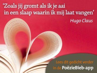 Poeziebieb app