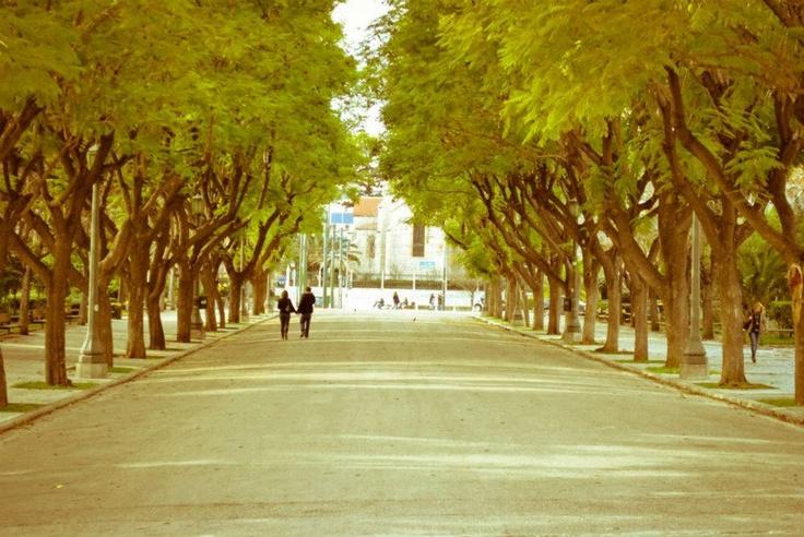 www.facebook.com/atenistas/photos_albums
