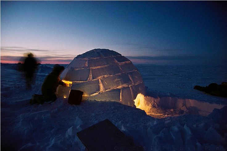 igloo-Joanna-B.-Pinneo.jpg (750×502)