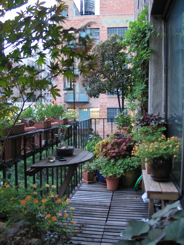 25 best ideas about balcony garden on pinterest small for Terrace plants