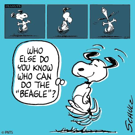 "Do The ""Beagle"" also known as ""Snoopy Happy Dance"""